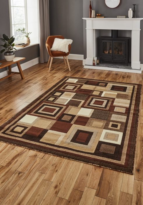 Hudson 3222 Brown.Beige _9 Rug