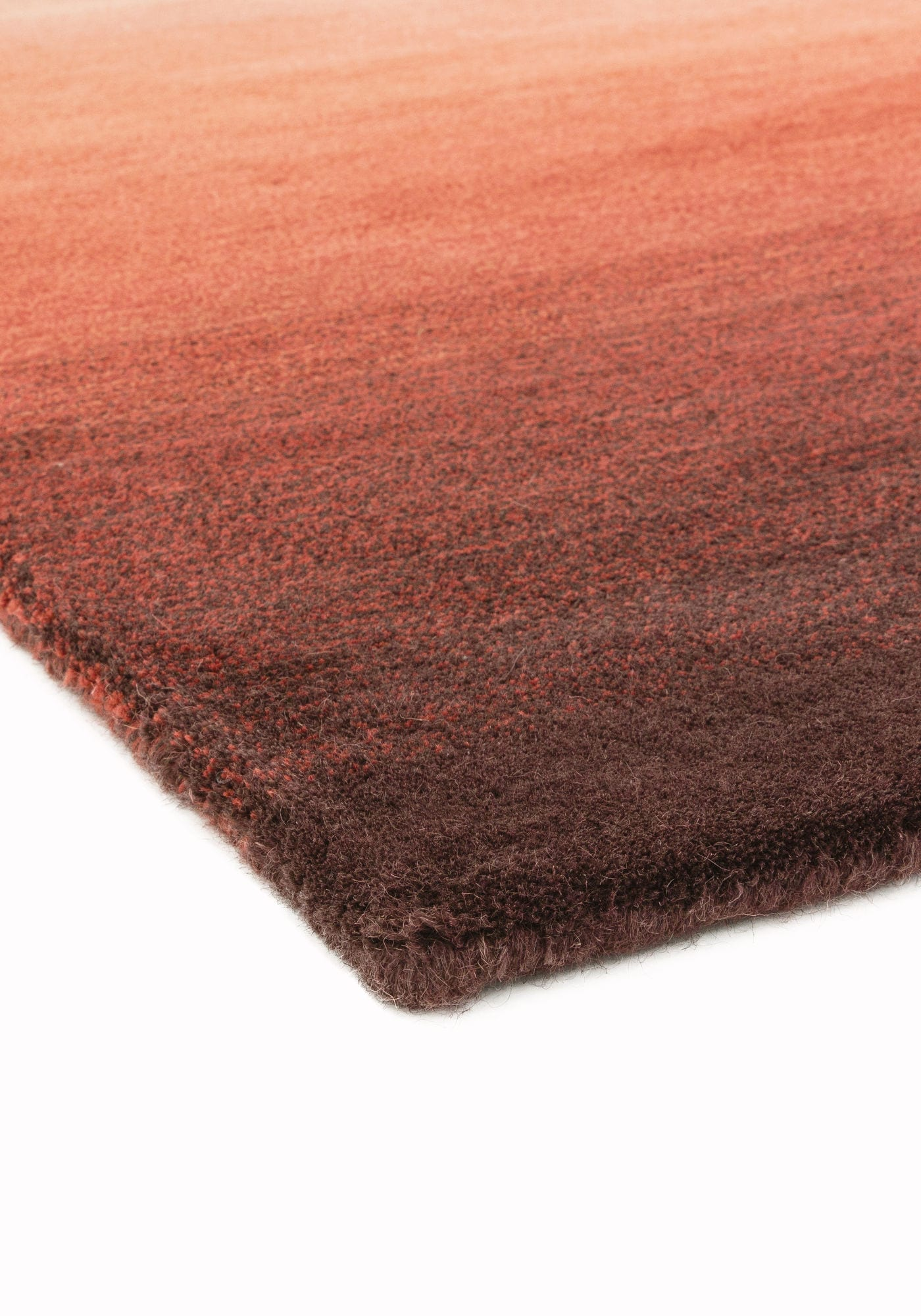 Ombre Rug By Asiatic Carpets Design