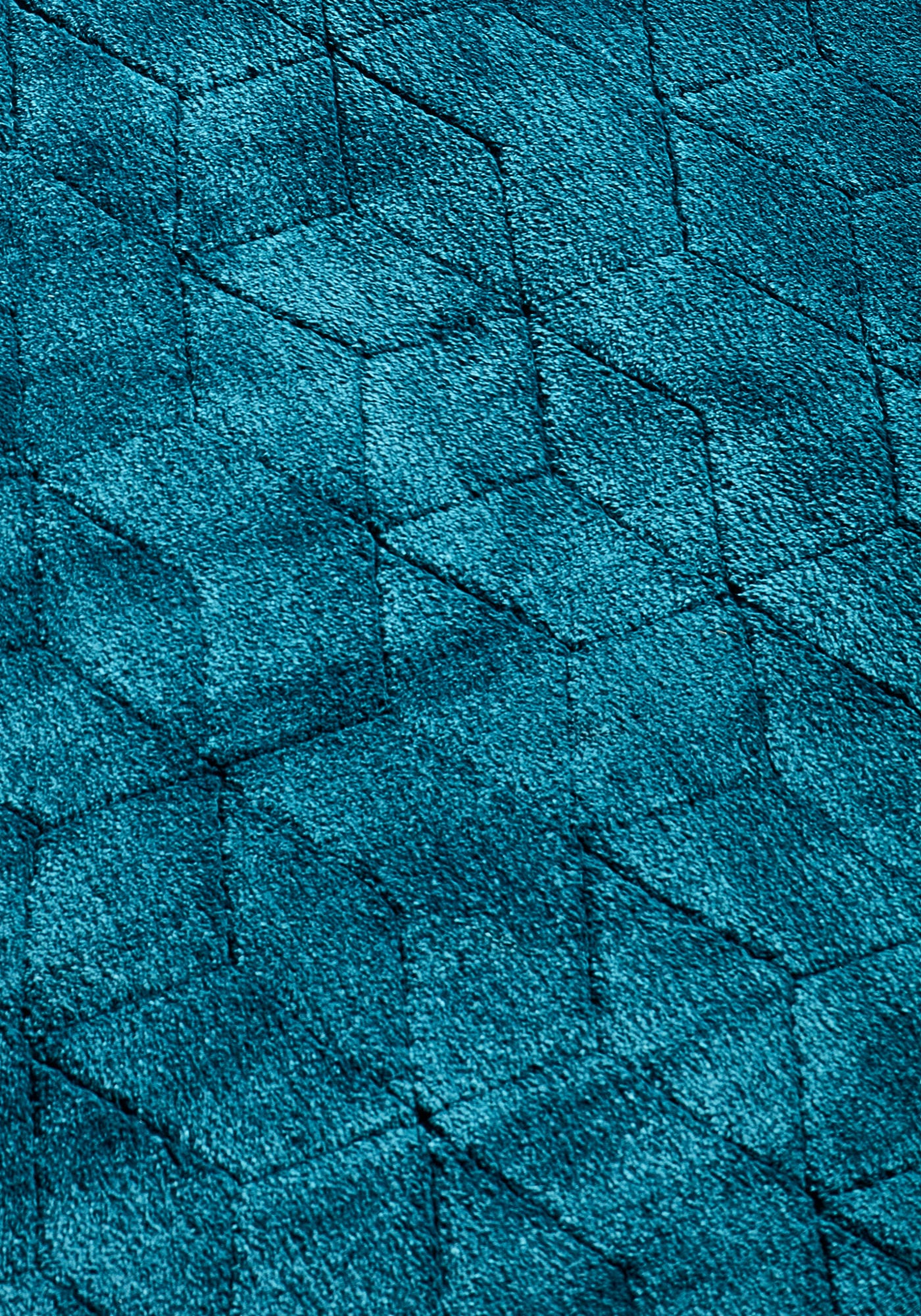 Cozy Rug By Asiatic Carpets Colour Teal