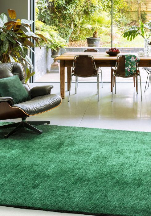 Milo Green Rug - Roomset shot